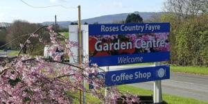 Roses Fayre